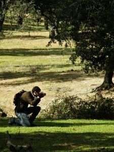 Javier Pérez Fotografía naturaleza