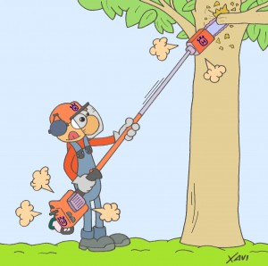 Jardinero-pertiga