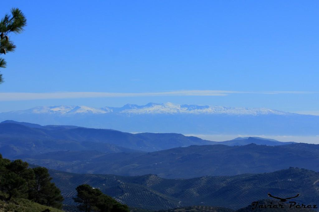 Vistas a Sierra Nevada