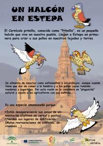 Cartel primilla Logos
