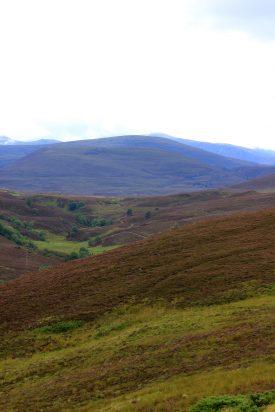 Moorlands escocesas
