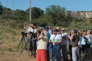 Ruta Ornitológica Estepa