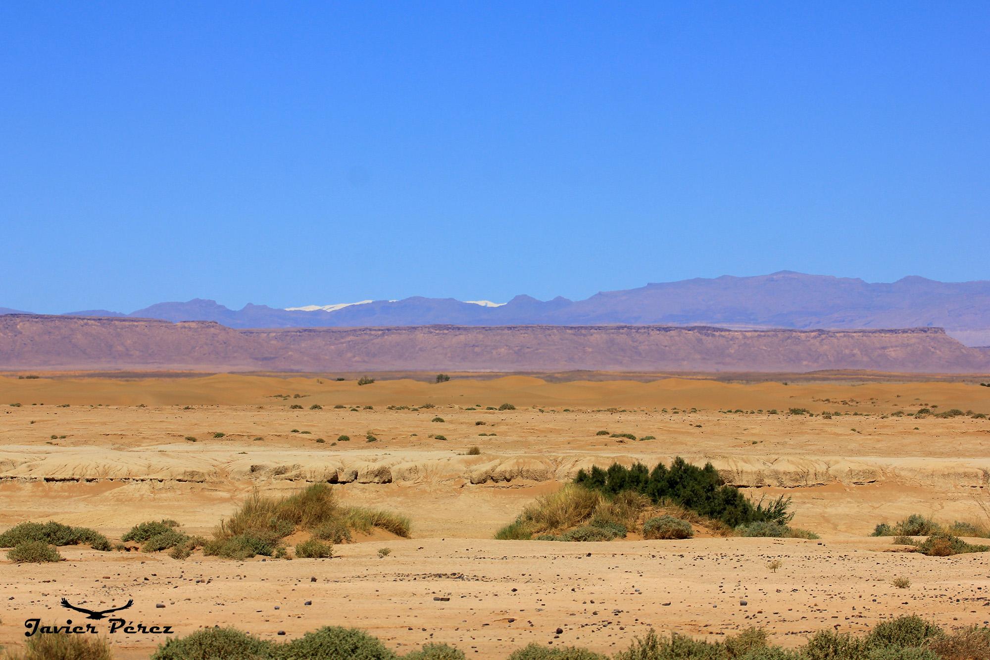 Desierto y Atlas al fondo